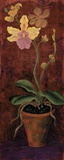 Orchid Panel I Print on Canvas by Lisa Ven Vertloh