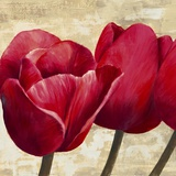 Red Tulips (detail) Print on Canvas by Cynthia Ann