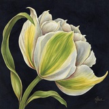 Fleur Blanche Print on Canvas by Constance Lael