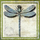 Dragonfly Print on Canvas by Karen J. Williams