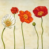 Coquelicots (detail) Print on Canvas by Cynthia Ann