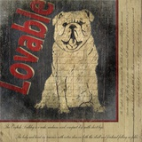 Bull Dog Print on Canvas by Karen J. Williams