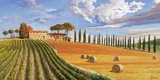 Colline toscane Print on Canvas by Adriano Galasso