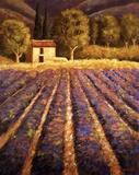 Lumiere De Provence Print on Canvas by Santo De Vita