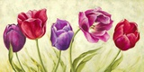 Tulipani danzanti Print on Canvas by Silvia Mei