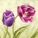 Tulipani danzanti (detail) Print on Canvas by Silvia Mei