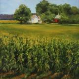 Corn Fields Print on Canvas by Jan E. Moffatt