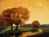 Trees in summer Print on Canvas by Vincent McIndoe