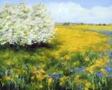Spring I Print on Canvas by Jan E. Moffatt