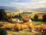 Hazy Tuscan Farm Print on Canvas by S. Hinus