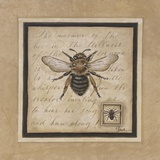 Worker Bee Print on Canvas by Constance Lael