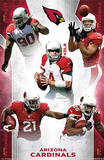 Arizona Cardinals 2012-13 Team Posters