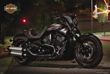 Harley Davidson - Night Rod Posters