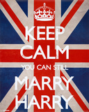 Keep Calm You Can Still Marry Harry Plakater