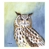 Eagle Owl II Giclee Print by Friedhelm Weick