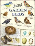British Garden Birds Blechschild