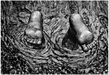 Feet In Water Statue Newport Rhode Island Posters