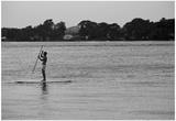 Surfer Paddling Shelter Island NY Prints