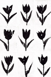 Tulip Noir Composite Prints by Lilian Scott