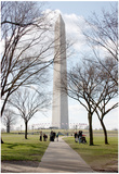 Washington Monument DC Posters