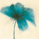 Floral Burst I Posters by Emma Forrester