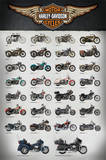 Harley Evolution Posters