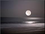 Full Moon Mounted Photo by Mitch Diamond