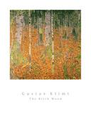Der Birkenwald Kunstdrucke von Gustav Klimt