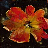 Botany Fleur V Poster by  Georgie