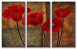 Poppies on Spice Triptych Art Wood Sign
