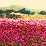 Le Jardin Rouge, Provence Poster by Hazel Barker