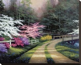 Dogwood Road Stretched Canvas Print by Egidio Antonaccio