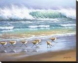 Piper Wave Reproduction transférée sur toile par Sung Kim