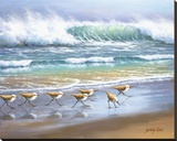 Piper Wave Stretched Canvas Print by Sung Kim