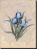 Tulips Azure Stretched Canvas Print by Peggy Abrams
