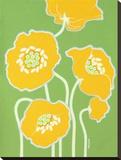 Poppy Power Stretched Canvas Print by Monica Kuchta