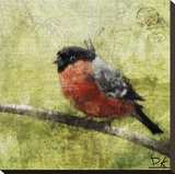 Bird Buddy I Stretched Canvas Print by Kay Daichi