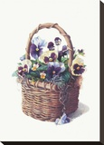Rustic Pansy Basket Stretched Canvas Print by Mary Kay Krell