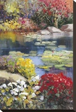 Garden Pond Stretched Canvas Print by Kent Wallis