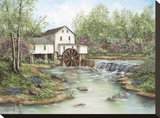 Pigeon Hollow Mill Stretched Canvas Print by Sherry Masters