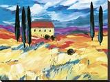 Provence Impression I Stretched Canvas Print by Natasha Barnes