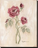 Miniature Rose II Stretched Canvas Print by Peggy Abrams