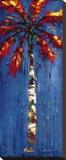 Coastal Palm II Stretched Canvas Print by J. Martin