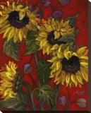 Sunflowers II Trykk på strukket lerret av Shari White