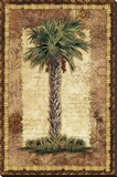 Classic Palm II Stretched Canvas Print by Kathleen Denis