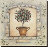 Pomegranates Topiary Stretched Canvas Print by Susan Winget