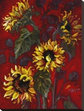 Sunflowers I Stretched Canvas Print by Shari White