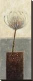 Agapanthus I Reproduction sur toile tendue par Jennifer Carson