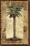 Classic Palm I Stretched Canvas Print by Kathleen Denis