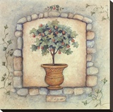 Figs Topiary Stretched Canvas Print by Susan Winget